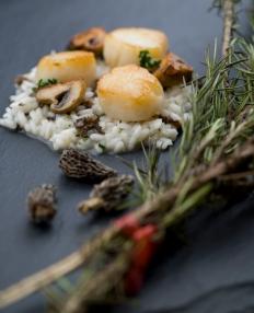 01 risotto med kamskjell