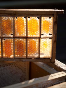 4 honning