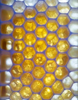 5 honning