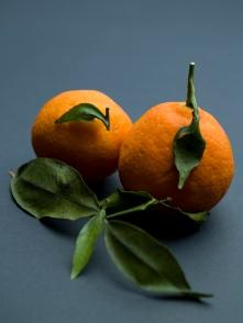 libanesiske appelsiner