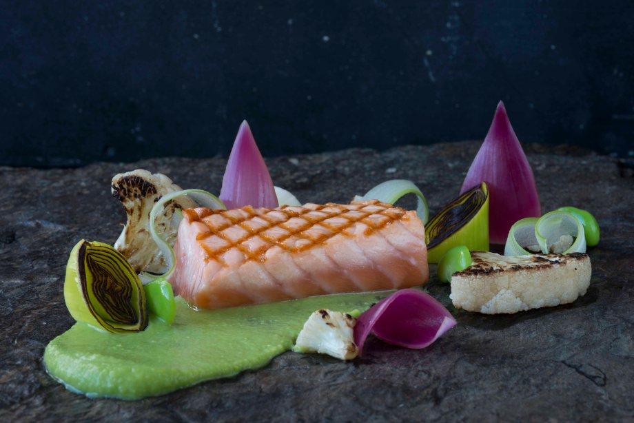 salmon 01