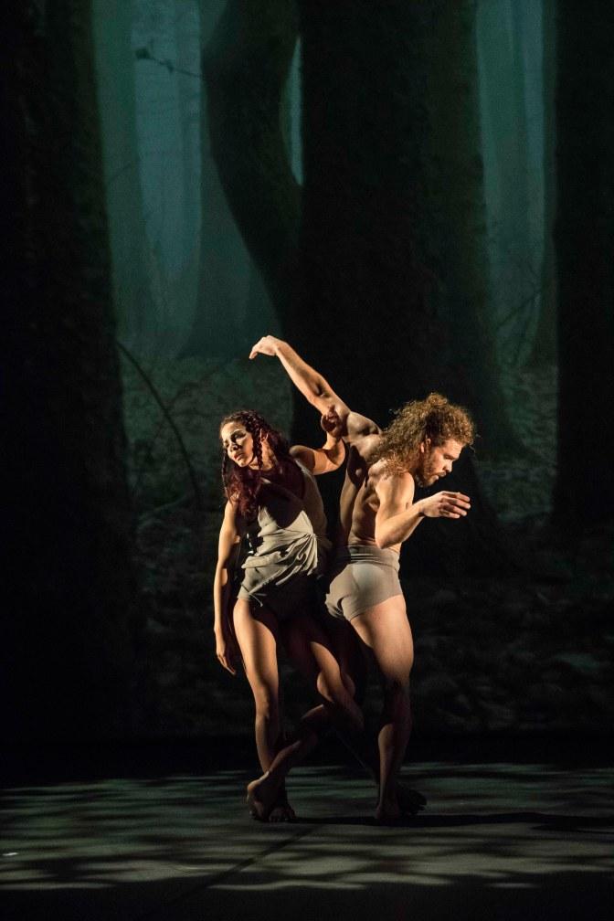 acosta danza foto thor brodreskift_4