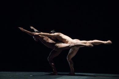 acosta danza foto thor brodreskift_6