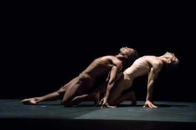 acosta danza foto thor brodreskift_7